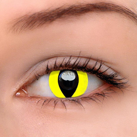 Reptile Glow Colored Contact Lenses | Lamon Beauty