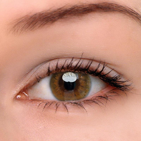 Sunflower Brown Colored Contact Lenses | Lamon Beauty