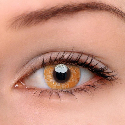 Macadam Brown Colored Contact Lenses | Lamon Beauty