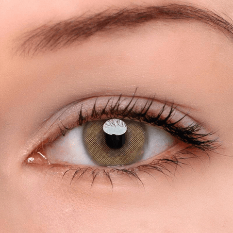 Queen Brown Colored Contact Lenses | Lamon Beauty