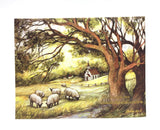 Lang Sheep Farm Notecards - Country Cottage Gifts