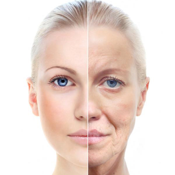 skin aging picture