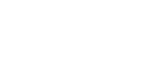 Lush Fashion Lounge