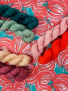 CITY BUMPKIN Mini Skein Set