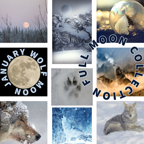 2021 January Wolf Moon Skein PREORDER closes 1/18/21!