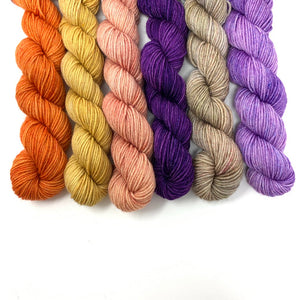 SQUIRREL JAM Mini Skein Set