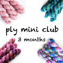 Load image into Gallery viewer, 3 Months Pancake and Lulu Mini Skein Club