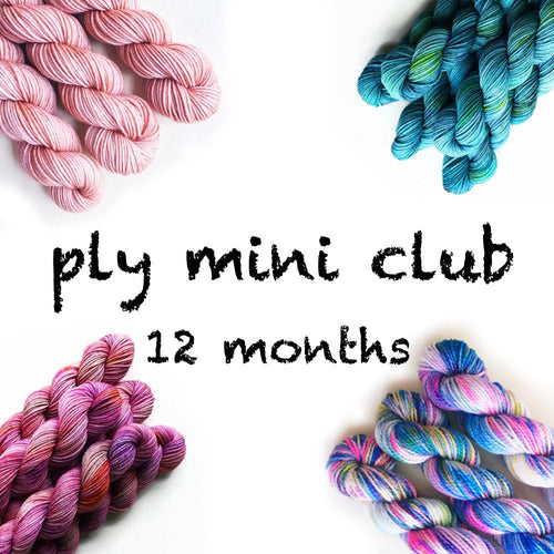 12 Months Pancake and Lulu Mini Skein Club