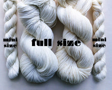 Load image into Gallery viewer, BALLET hand dyed mini skein