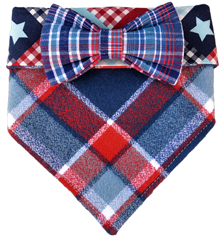 All American Cruiser Bandana & Bow Set