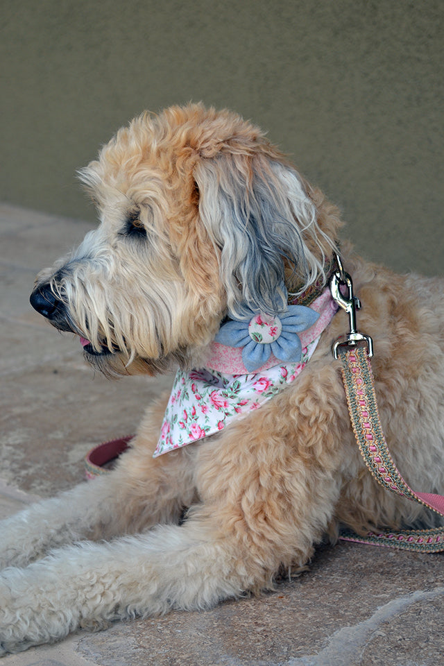 Pretty in Pink Bandana & Bow Set