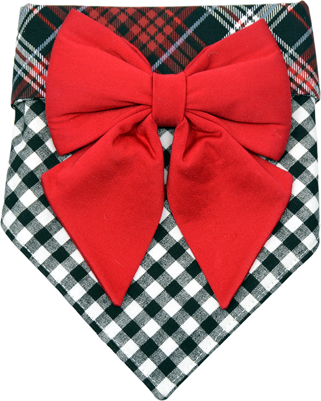 Pup Love Bandana & Bow Set
