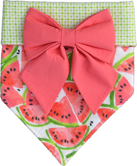 Watermelon Bandana & Bow Set