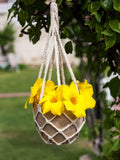 Gulbahar Wooden Hanging Planter with Knit Holder - Pinklay
