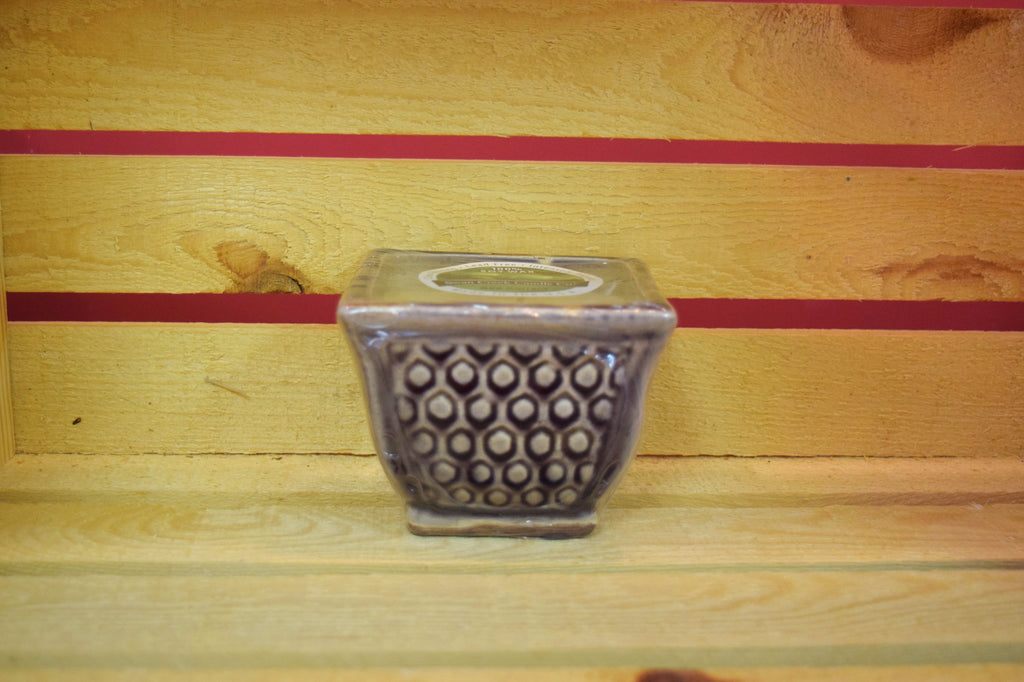 Red Currant - French Farmhouse Square Pot