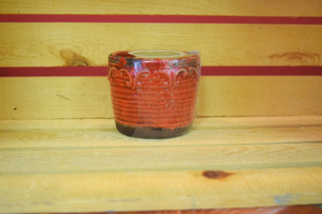 Red Currant - Vintage Round Pot