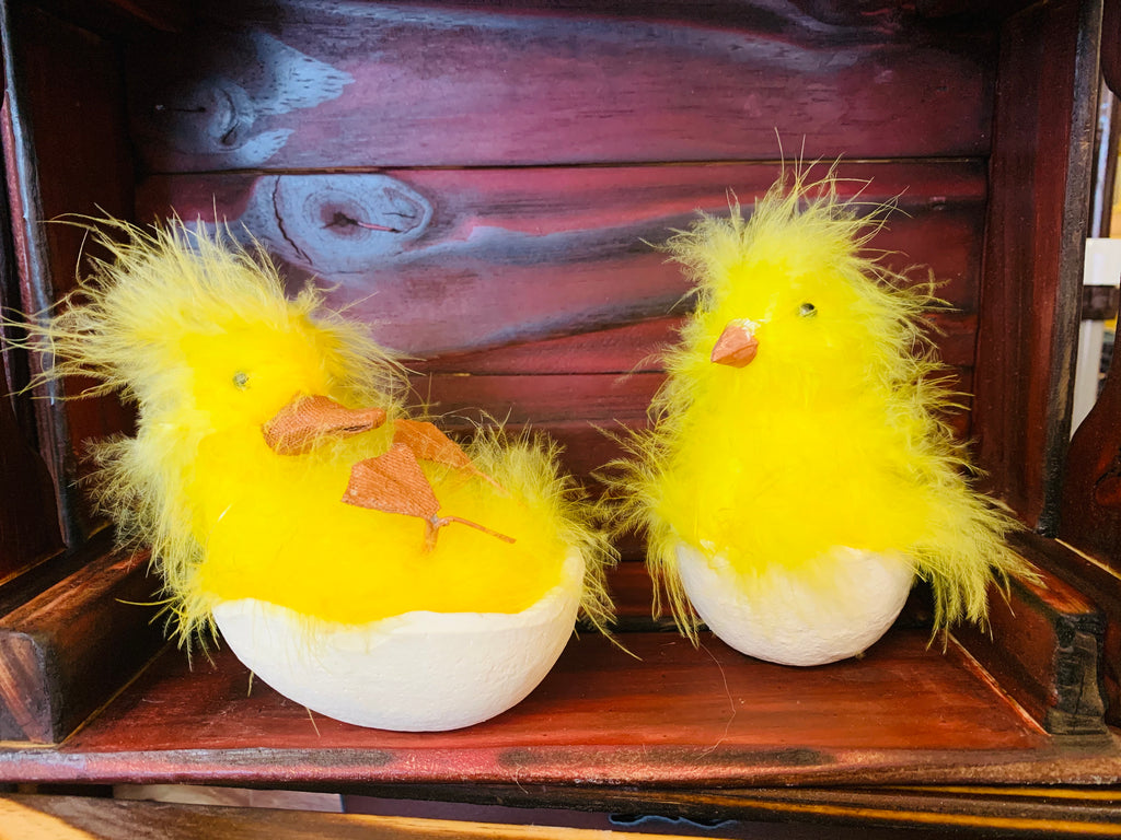 Chicks in Eggs
