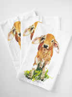 V8 Brahman Calf Watercolor Kitchen Flour Sack Tea Towel