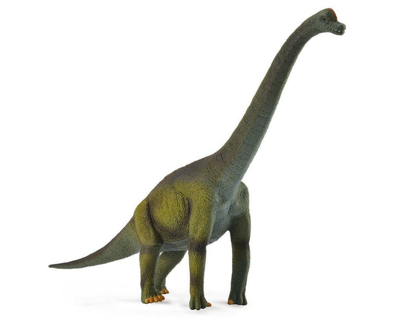 Brachiosaurus Toy Breyer