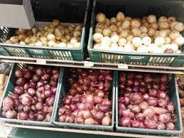 Onion Sets (100 Bulbs) Onion Sets Peak of the Market
