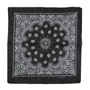 Alternative Retro Paisley Bandana