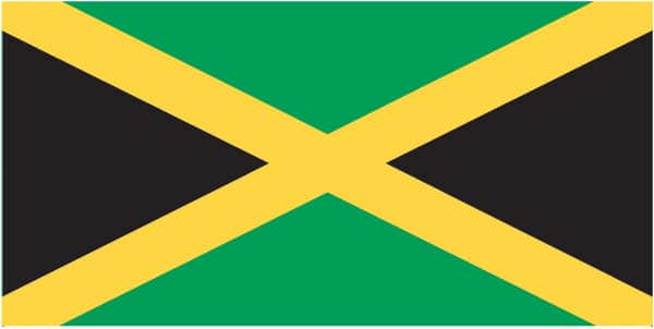 ZFLAG003