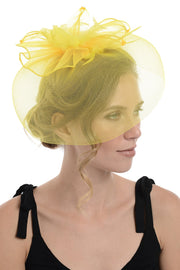 Black Fascinator On Concord Beak Clip Or Aliceband (Diameter Approx. 30cm, Height Approx. 10cm)