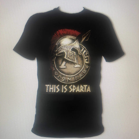 Sparta Car Care This is Sparta T-Shirt - sparta-car-care