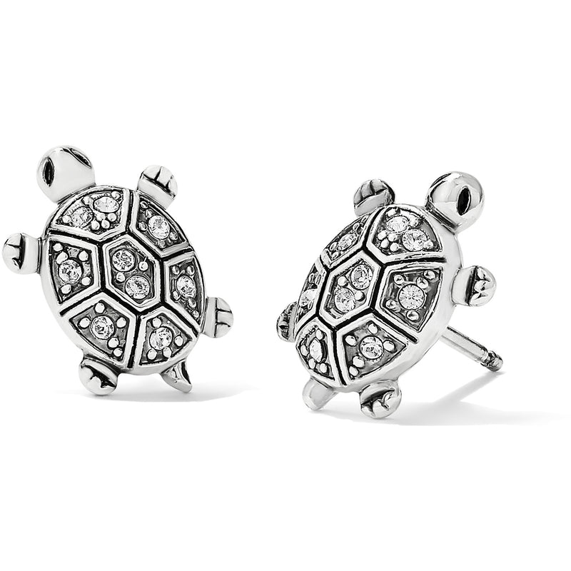 Fortune Turtles Mini Post Earrings