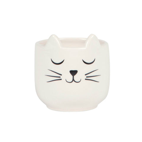 maceta gato plant pot plants