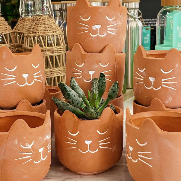 Mini maceta gato terracota barro cute plantas gatito