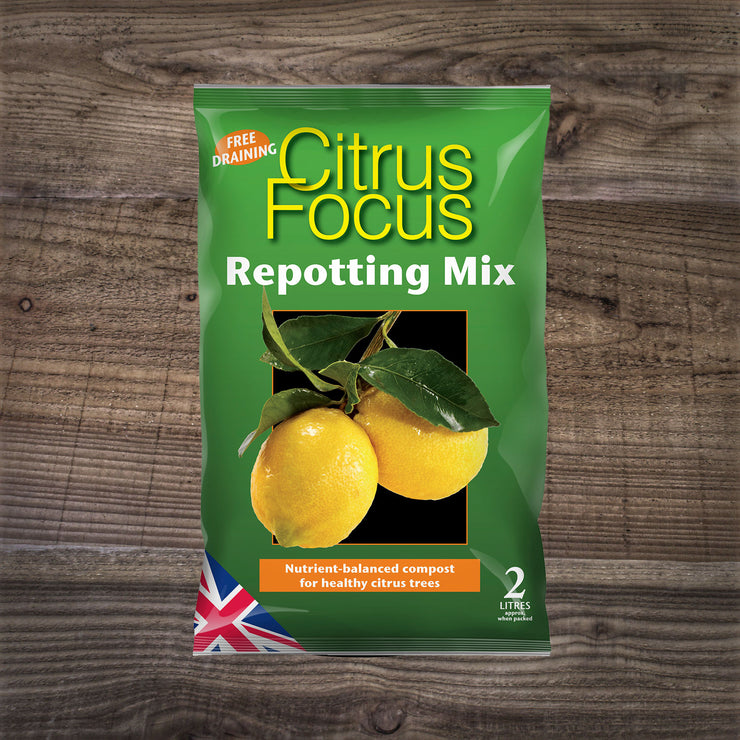 Citrus Focus Repotting Mix