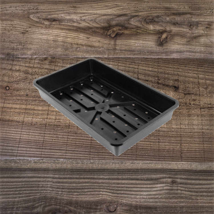 Rigid Seed Tray