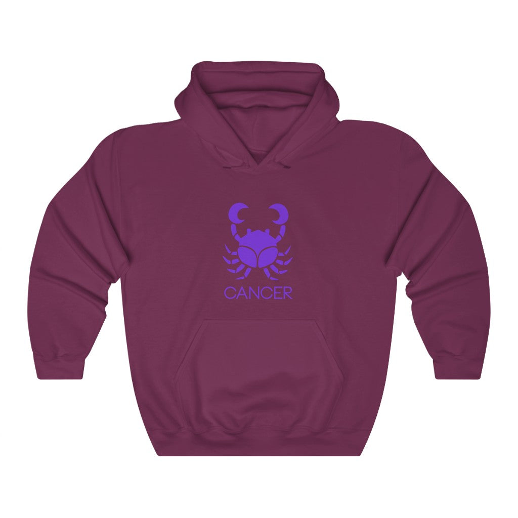 CANCER Heavy Blend™ Hooded Sweatshirt-Degree T Shirts