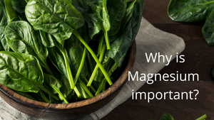 Why is Magnesium important?