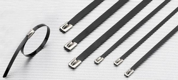 Polyester coated stainless steel ties
