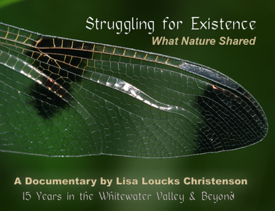 Struggling for Existence: What Nature Shared