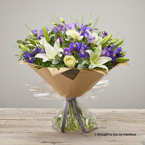 Large Purple Comfort Hand-tied