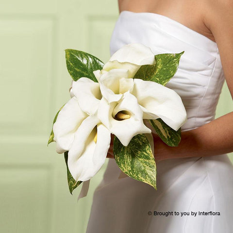 Chic White Calla Lily Deluxe Bridal Bouquet