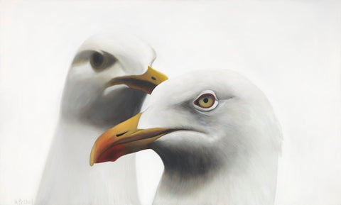 Seagull art print , New Zealand seabirds,  native birds of New Zealand