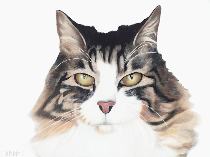 "Cat Art Print ""Ziggy Marly"""