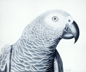 parrot acrylic on canvas painting, black and white art. large format bird painting . bird portrait