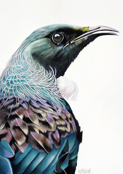 new zealand tui art print, native NZ birds