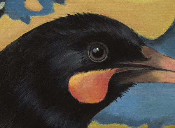 """Beckett"" Huia in Golden Skies"