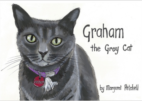 Graham the Grey Cat