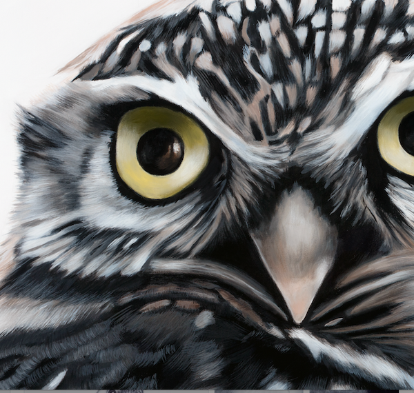 "Small Owl Art Print ""Olive"""