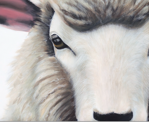 "Sheep Art Print ""Esther"""