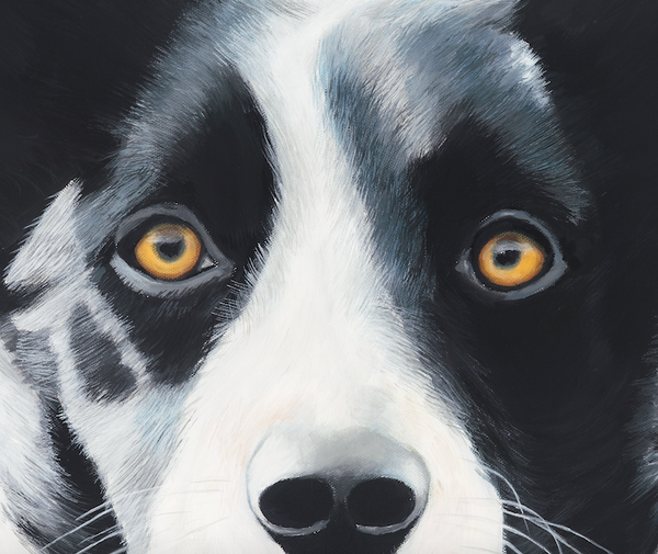 farm dog, dog art print details
