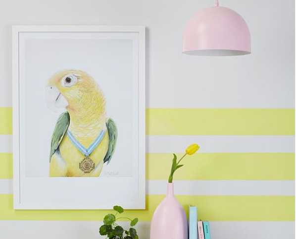 yellow parrot framed, hanging on the wall