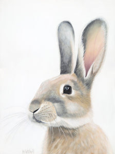 Bunny , rabbit art print